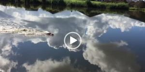 zwemmen_in_de_wolken_1.jpg